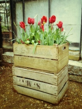 You can't go wrong with old wooden crates!